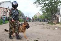 В Плеханово продолжается снос незаконных цыганских построек, Фото: 43