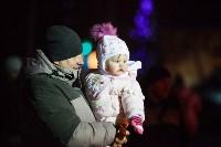 Главную ёлку Тулы открыли грандиозным фейерверком, Фото: 69