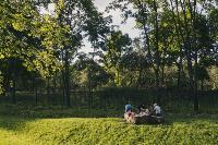 Летний день в богородицком парке, Фото: 9
