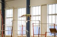 Спортивная гимнастика в Туле 3.12, Фото: 160