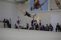 Открытый турнир по спортивной гимнастике. 23-30 ноября 2013, Фото: 6