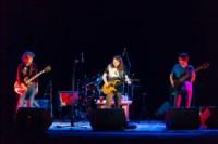 Чиж в Туле, 9.11.2014, Фото: 60