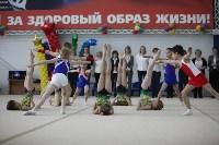 Соревнования по спортивной гимнастике на призы Заслуженных мастеров спорта , Фото: 23