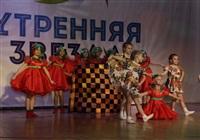 """""""Утренняя звезда"""" по-тульски, Фото: 10"""