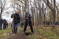 Высадка деревьев в Рогожинском парке, Фото: 2