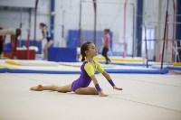 Спортивная гимнастика в Туле 3.12, Фото: 116