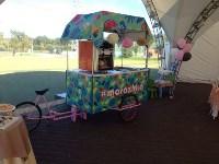 Мороженое для молодоженов и гостей от «Морожки», Фото: 1