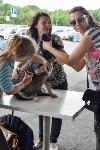 В тульском «Макси» прошел благотворительный фестиваль помощи животным, Фото: 30