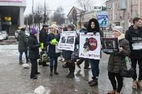 Более 8000 туляков требуют запретить убийство бездомных животных, Фото: 14