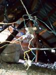 Горы мусора, грибок и аварийные балконы: под Ясногорском рушится многоквартирый дом, Фото: 48