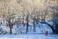 Морозное утро в Платоновском парке, Фото: 30