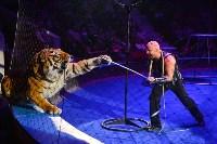 Цирковое шоу, Фото: 150