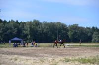 В Ясной поляне стартовал турнир по конному спорту, Фото: 51