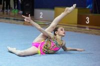 Соревнования по художественной гимнастике 31 марта-1 апреля 2016 года, Фото: 127