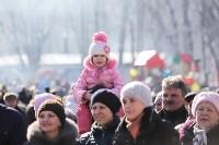 В Центральном парке празднуют Масленицу, Фото: 26
