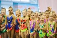Открытый кубок региона по художественной гимнастике, Фото: 60