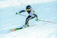Первый этап чемпионата и первенства Тульской области по горнолыжному спорту, Фото: 61