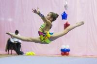 Соревнования по художественной гимнастике 31 марта-1 апреля 2016 года, Фото: 38
