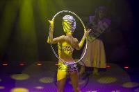 Шоу фонтанов «13 месяцев» в Тульском цирке – подарите себе и близким путевку в сказку!, Фото: 45
