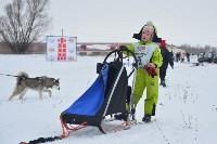 Праздник северных собак на Куликовом поле , Фото: 91