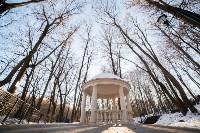Морозное утро в Платоновском парке, Фото: 11