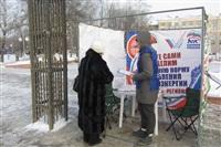 Пикет «Единой России» в поддержку увеличения соцнормы на электроэнергию, Фото: 4