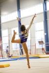 Спортивная гимнастика в Туле 3.12, Фото: 181