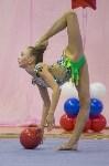 Соревнования по художественной гимнастике 31 марта-1 апреля 2016 года, Фото: 23