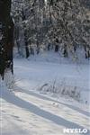 Зимняя сказка Платновского парка, Фото: 18