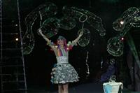 В Тульском цирке прошла премьера аква-шоу, Фото: 54