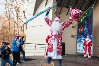 Забег Дедов Морозов, Фото: 142