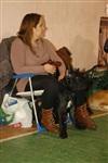 В Туле прошла всероссийская выставка собак, Фото: 53