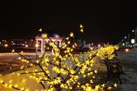 Новогодняя Тула. Декабрь 2013, Фото: 20