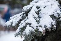 Тула после снегопада. 23.12.2014, Фото: 47
