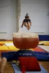 Спортивная гимнастика в Туле 3.12, Фото: 144