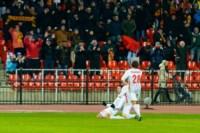 Арсенал - Амкар. 23.11.2014, Фото: 116