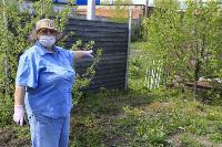 Бродячие собаки погубили рассаду тулячки и довели ее до сердечного приступа, Фото: 3