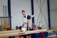 Региональное первенство по спортивной гимнастике. 20 -22 марта 2014, Фото: 9