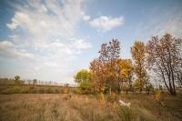 Золотая осень в Тульской области, Фото: 41