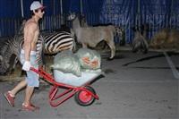 Цирк огромных зверей. Тула, Осиновая гора, 1, Фото: 7
