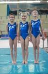 Тульские гимнастки привезли шесть медалей из Орла, Фото: 6