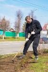 Субботник в Заречье, Фото: 20