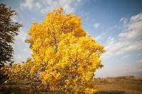 Золотая осень в Тульской области, Фото: 28