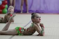 Соревнования «Первые шаги в художественной гимнастике», Фото: 51