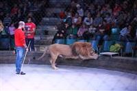 Новая программа в Тульском цирке «Нильские львы». 12 марта 2014, Фото: 19