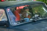 В Тульской области прошел фестиваль крапивы, Фото: 151