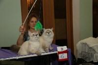 Выставка кошек. 21.12.2014, Фото: 12