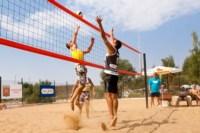 Пляжный волейбол в Барсуках, Фото: 54