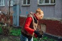 Посадка деревьев во дворе на ул. Максимовского, 23, Фото: 23