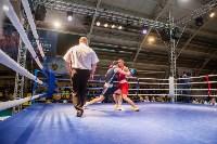 Гран-при Тулы по боксу-2017, Фото: 74